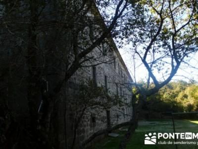 Castañar de la Sierra de San Vicente - Convento del Piélago;mochilas para trekking;tejo taxus bacc